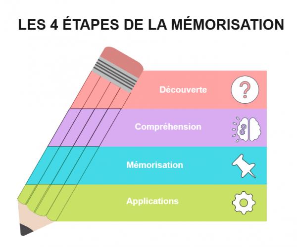 UE1 DSCG - Les étapes de mémorisation